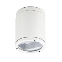 Surface mounted downlight / for outdoor use / compact fluorescent / HID