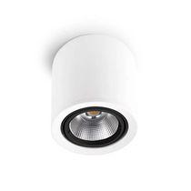 Surface mounted downlight / LED / tubular / round