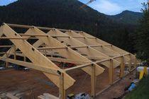 Picea abies beam / solid wood / rectangular / framing
