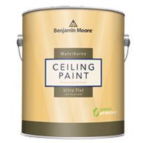 Ceiling paint / interior / matte / water