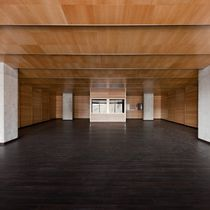 Wooden suspended ceiling / panel / acoustic