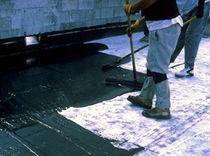 Liquid waterproofing membrane / flat roof / elastomeric / polyurethane