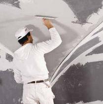 Smoothing coating / plaster / textured