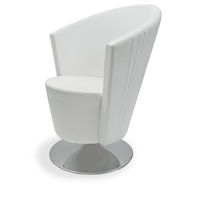 Polyurethane beauty salon chair / central base