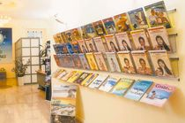 Wall-mounted display rack / periodicals / aluminum / for shops