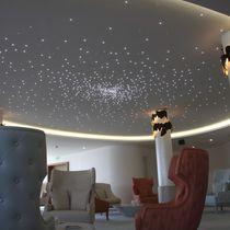 Composite suspended ceiling / panel / acoustic / luminous