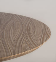 Interior organization decorative panel / wood / textured / curved