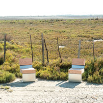 Contemporary chair / metal / wooden / for public spaces