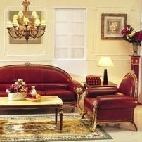 Louis XIV style armchair / leather / wooden