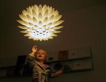Pendant lamp / original design