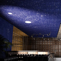 Vinyl suspended ceiling / panel / decorative
