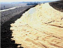 Biodegradable erosion control blanket / for erosion control