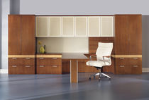 Contemporary desk / in wood / with storage / commercial