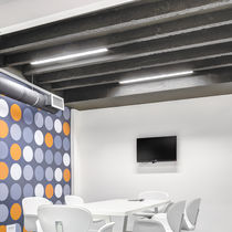 Surface mounted light fixture / LED / fluorescent / linear
