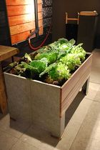 Sheet steel garden planter / residential