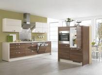 Contemporary kitchen / wood veneer