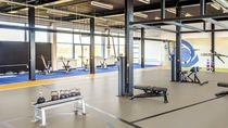 Linoleum sports flooring / for indoor use / for multipurpose gyms