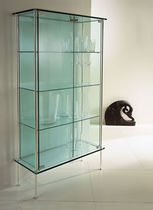 Contemporary display case / metal / glass