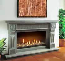 Gas fireplace / contemporary / traditional / open hearth