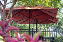 Bar patio umbrella / for public pools / for hotels / for special events