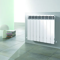 aluminium horizontal hot-water radiator JET PLUS RAGALL