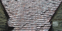 clay flat roof tile ANTIQUE Ludowici