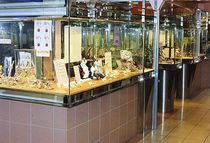 commercial display case   Formadour