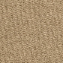 commercial synthetic loop pile carpet (Green Label Plus-certified, low VOC emissions) AGAVE Milliken Contract