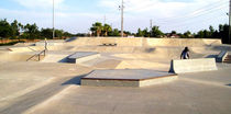 concrete skatepark OVIEDO, FLORIDA TEAM PAIN