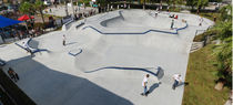concrete skatepark DUNEDIN, FLORIDA TEAM PAIN