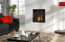 contemporary fireplace (gas closed hearth) CUPIDO 70  Element4 B.V.