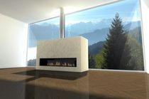 contemporary fireplace (wood-burning closed hearth)  Decor