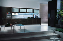 contemporary solid wood / glass kitchen MIDA COMPOSIT