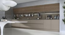 contemporary wood veneer / glass kitchen SYSTEM COLLECTION Pedini