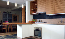 contemporary wood veneer / lacquer kitchen by Uldis Pimberis Design Group IN