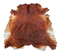 cowhide rug REDDISH BROWN Vohra Decor