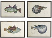 decorative painting TROPICAL FISH Williams Sonoma Home