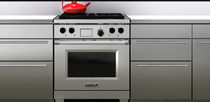 dual gas and electric range cooker 30&quot; SUB-ZERO