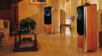 floor standing speaker DIMENSION TD10 TANNOY