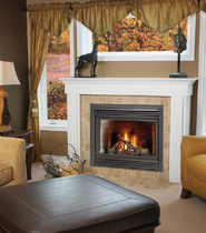 gas closed hearth for fireplace BD 36 DF Napoleon Fireplaces