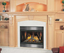 gas closed hearth for fireplace BGNV 42 Napoleon Fireplaces