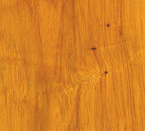 hickory solid wood floor HICKORY : TUNG OIL SATIN EBONY AND CO