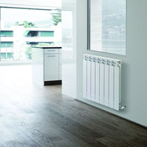 horizontal hot water radiator TOP RAGALL