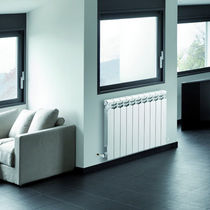 horizontal hot water radiator YSY RAGALL