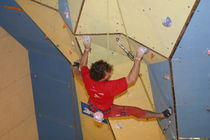 indoor fixed climbing wall TRIANGLE PLYWOOD Walltopia