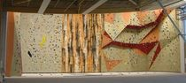 indoor fixed climbing wall ROCKTOPIA AND PLYWOOD Walltopia