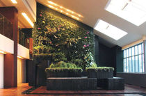 indoor green wall  CANEVAFLOR