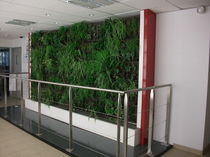 indoor green wall  TRACER