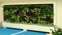 indoor green wall  Saint-Gobain Cultilene B.V.