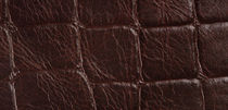 leather wallcovering DRACO PAMPATILES